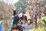 本报携手法雅园林植树节为江城添绿