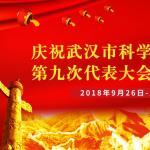 科学技术引领大武汉复兴